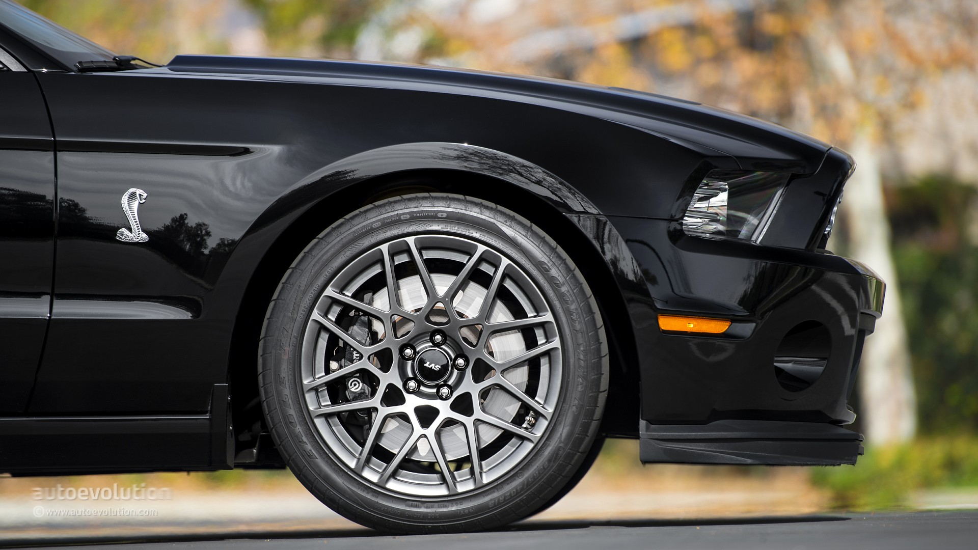 Shelby Gt500 Almost Crashes Into Old Focus St At European