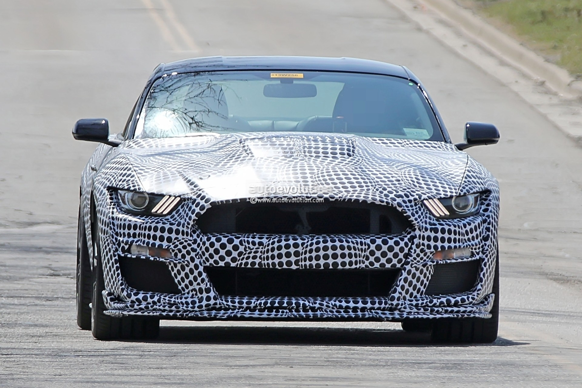 2019 Ford Mustang Shelby GT500 spied