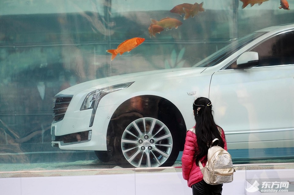 This cadillac ct6 is sleeping with the fishes in shanghai for Sleeping with the fishes