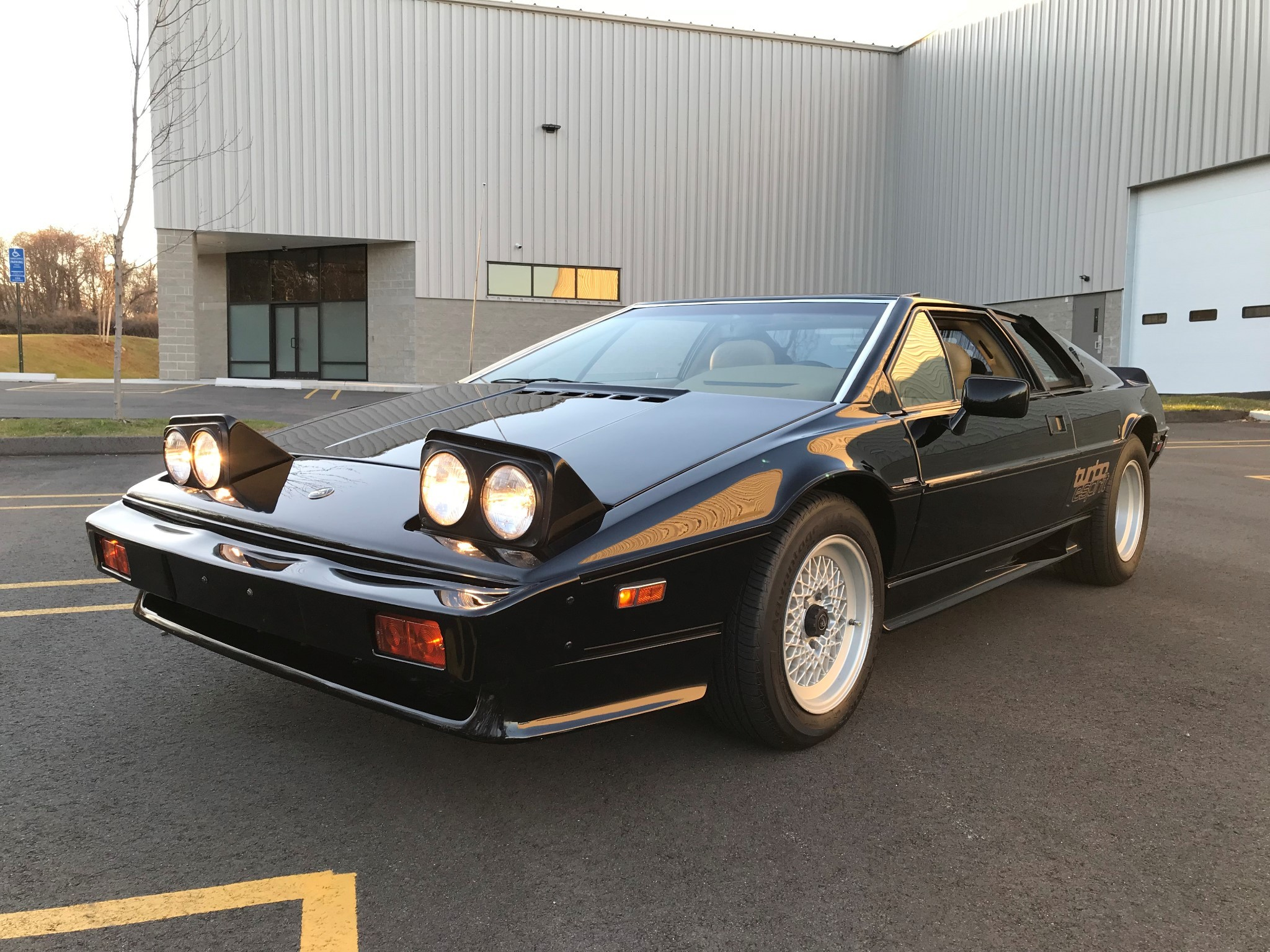 This Lotus Esprit HCi Turbo Is Looking For A New Owner - autoevolution