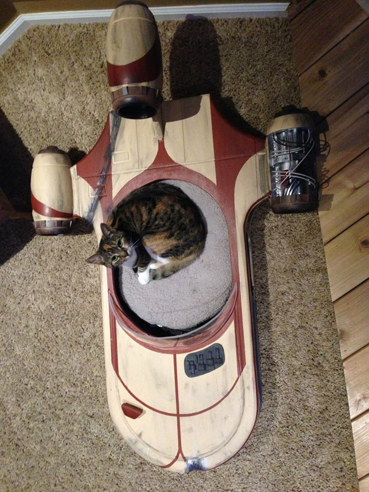 Star Wars Landspeeder is the Best Cat Bed Ever - autoevolution