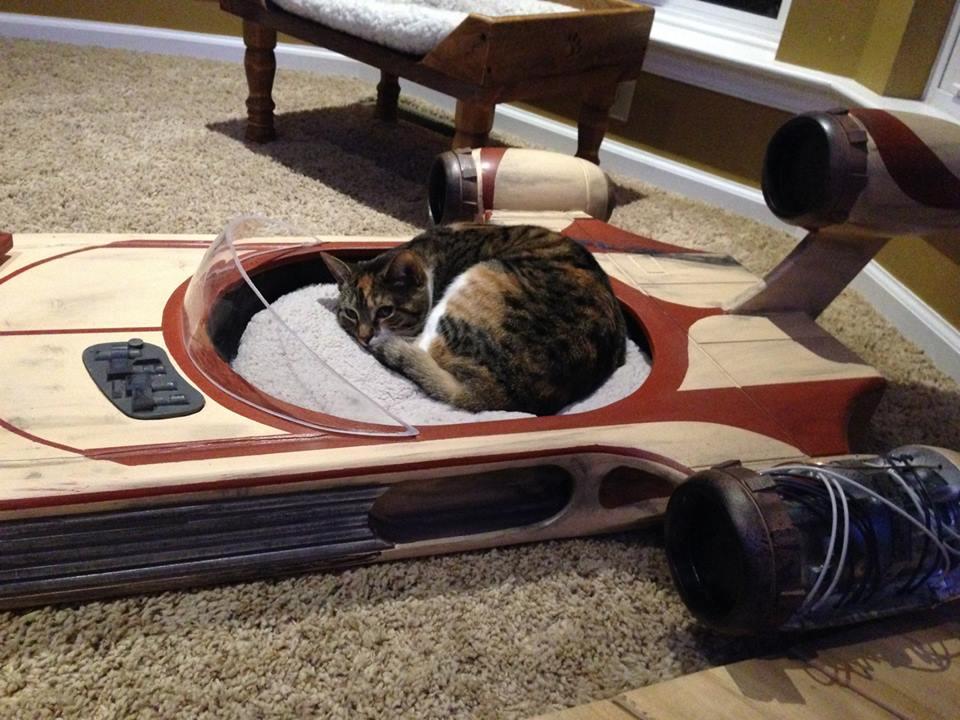 Star Wars Landspeeder Is The Best Cat Bed Ever Autoevolution