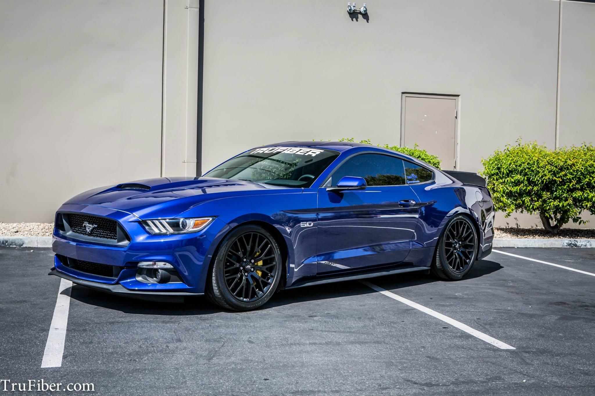 Tru Fiber Mustang
