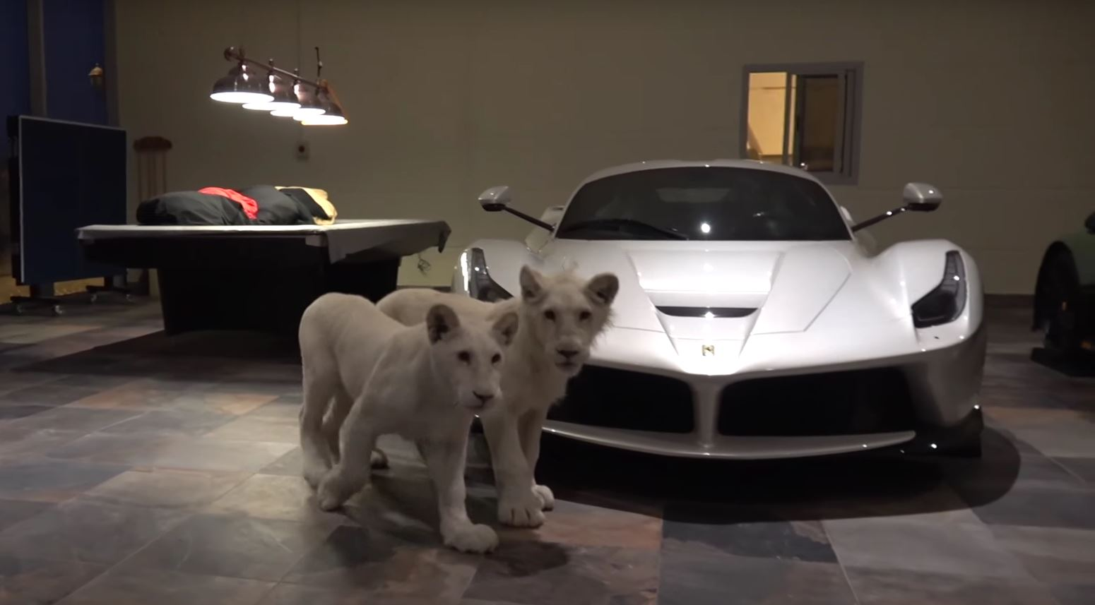 Two White Lion Cubs Join White Laferrari And Matte Green