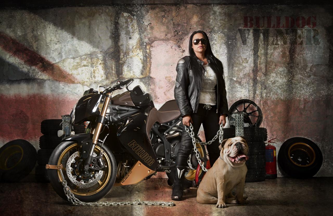 Vilner Bulldog A Custom Approach To The Triumph Speed