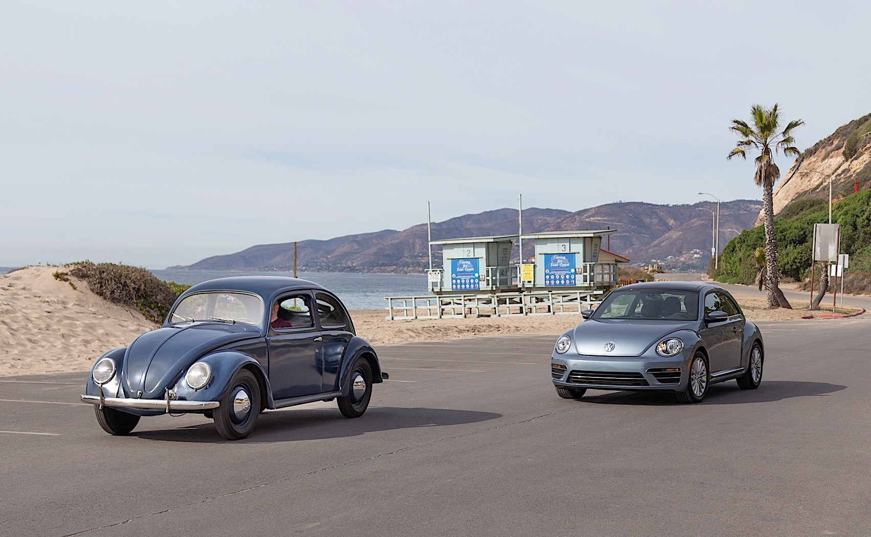 Volkswagen Beetle Says Goodbye In Los Angeles With Final