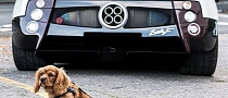 Guarding a Pagani Zonda: Best Dog Job Ever