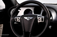 Bentley Continental steering wheel