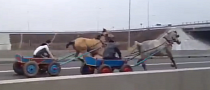 Horse and Cart Racing on Highway in Romania [Video]