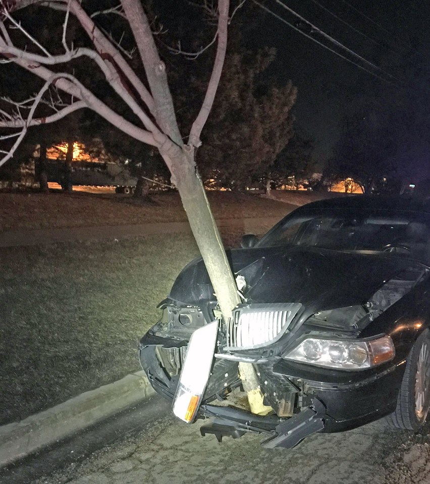 Tree stuck in car grille video
