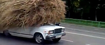 Lada Carries Huge Stork's Nest On Its Roof in Russia [Video]