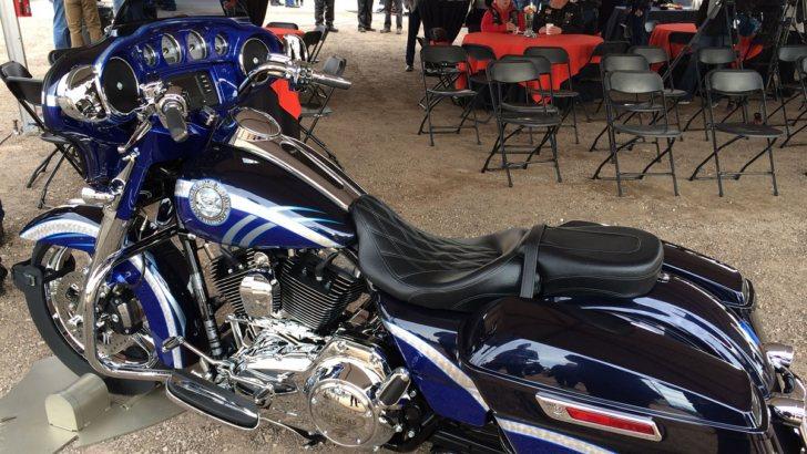 Las Vegas Harley Davidson One Off Nevada 150th Anniversary State