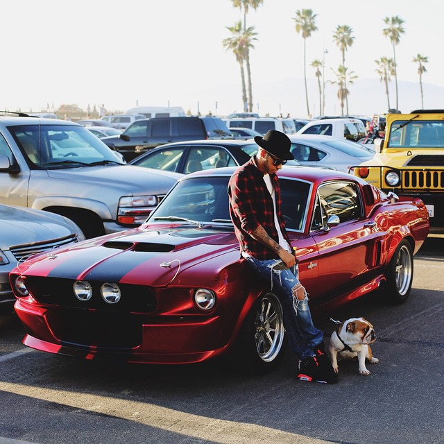 Pagani Zonda Lh: Lewis Hamilton Drives A Shelby GT500 When He Takes His Dog
