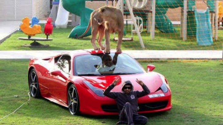 Man Puts Lion on Ferrari 458. Can You Guess Where? [Photo Gallery]