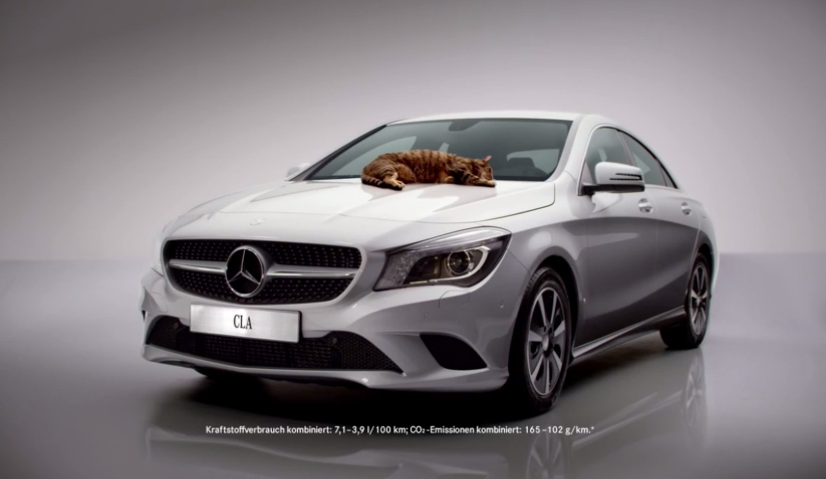 Mercedes benz cla cat commercial meows in germany for Mercedes benz commercial