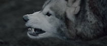 Mercedes CLA TV Promo: Untamed Wolf Spirit [Video]