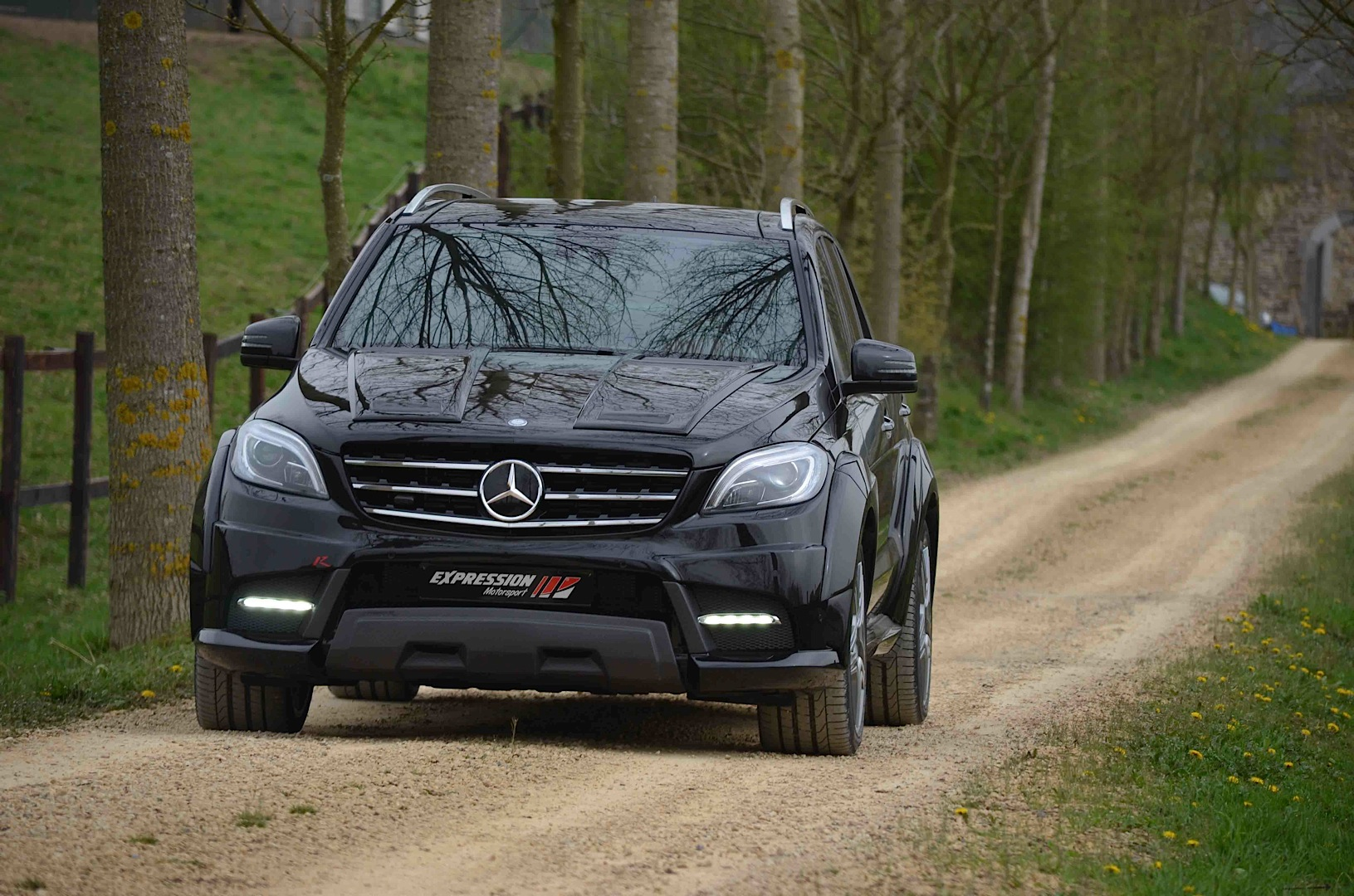 Ml 63 amg wide by expression preys on small children for Mercedes benz for kids