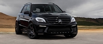 ML63 AMG Inferno Black by TopCar [Photo Gallery]