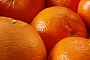 OMG: Cars Could Run on Fuel Made from Orange Peels!