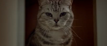 Peugeot UK Commercial: Gary's Cat / Just Add Fuel [Video]