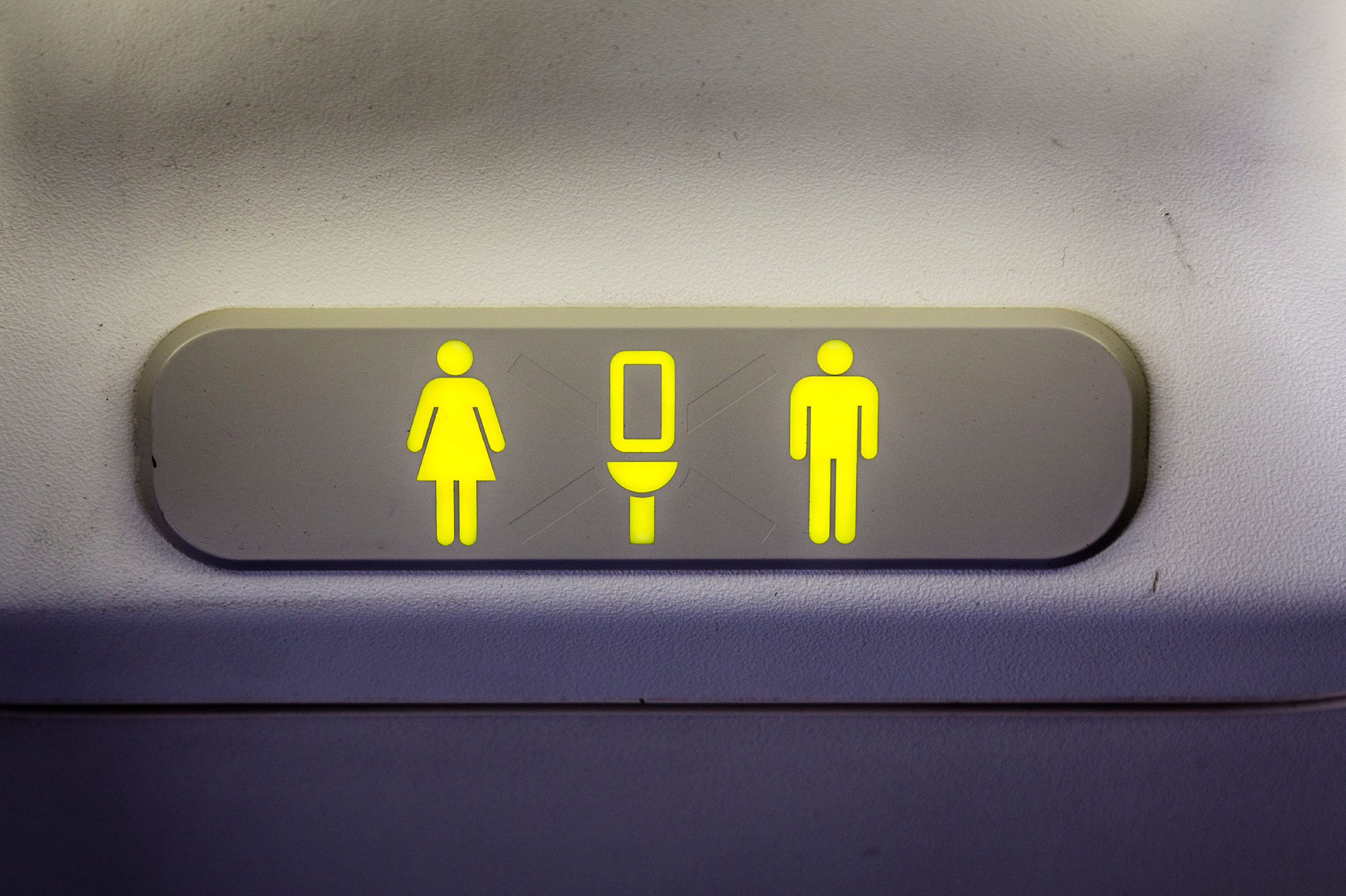 Plane Filled With Plumbers Forced To Land Due To Toilet