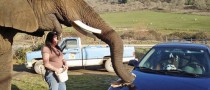 Real Elephant Car Wash, Flintstones Style