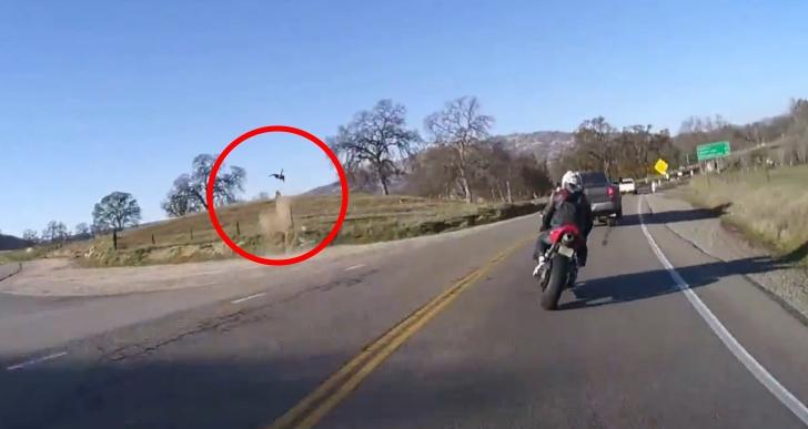 Hard Hitting Car Crash Video