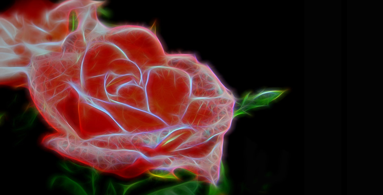 Scientists Build Electronic Circuits Inside A Rose And This Could Circuit To 15 Photos