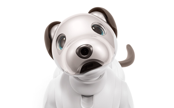 Sony's aibo Robot Puppy Coming to The U.S. for $2899