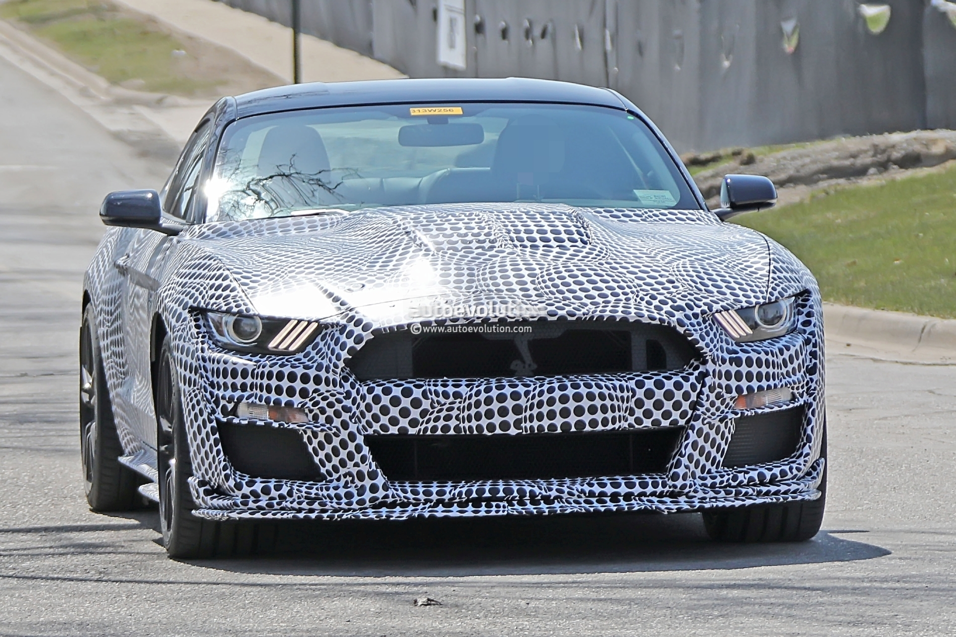 Spyshots: New Ford Mustang Shelby GT500 Shows