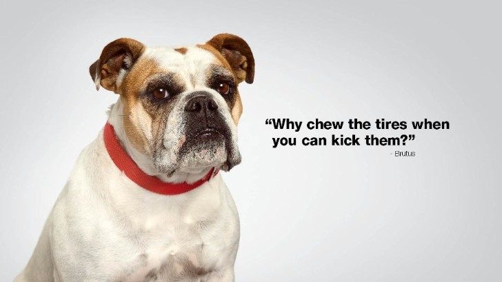 "Subaru Teases New ""Dog Tested. Dog Approved"" Ads for 2013 Puppy Bowl [Video]"