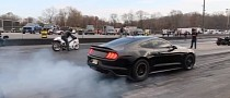 Supercharged Ford Mustang GT Drag Races Suzuki Hayabusa, Somebody Gets Crushed
