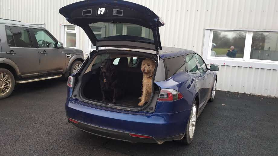 Tesla Model S Shooting Brake Is The Perfect EV For Dog Owners