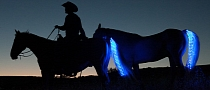 These People Make LED Tail Lights for Your Horse