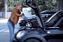 This Is How a Blonde Changes Her Car Oil [Video]