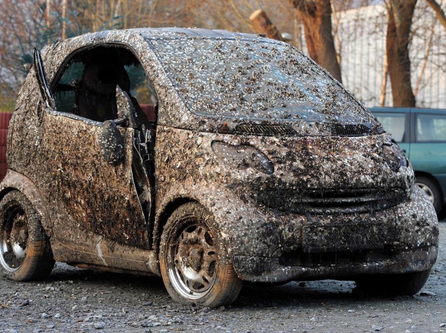 This Wrecked Smart Sold for $1,400 After Laying on the Bottom of the ...