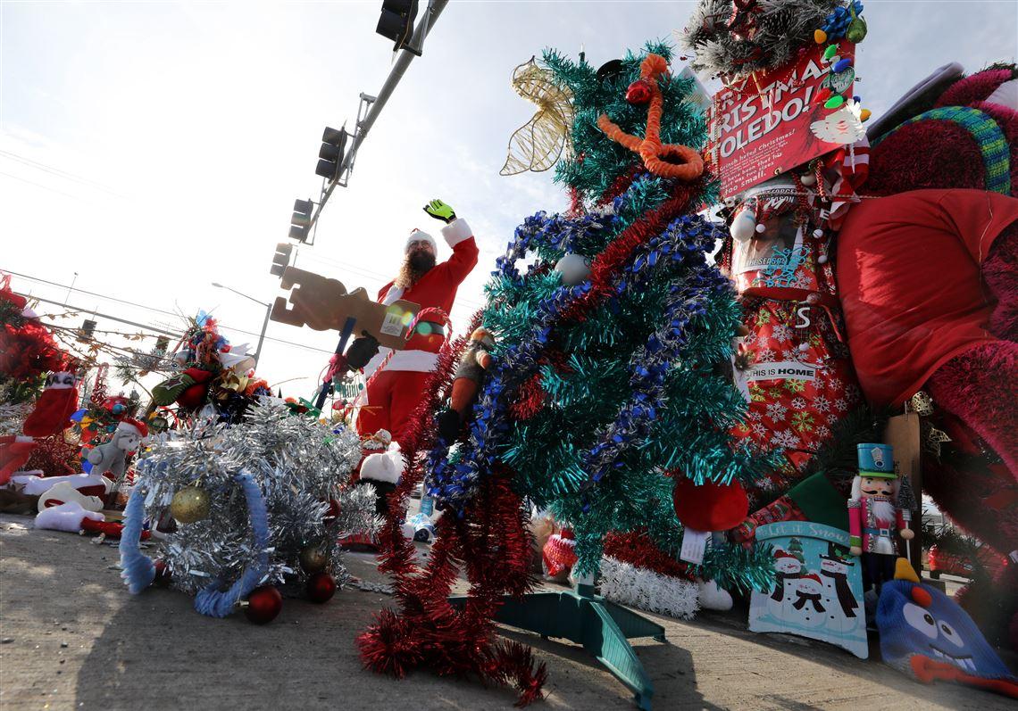 Toledo Christmas Weed.Toledo S Famous Roadside Christmas Weed Stolen Carried Off
