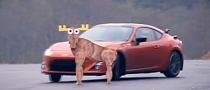 Toyota GT 86 Doesn't Care About the Moose Test [Video]