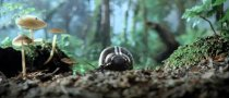 VW Super Bowl Ad Teaser: 21st Century Beetle Revealed [Video]