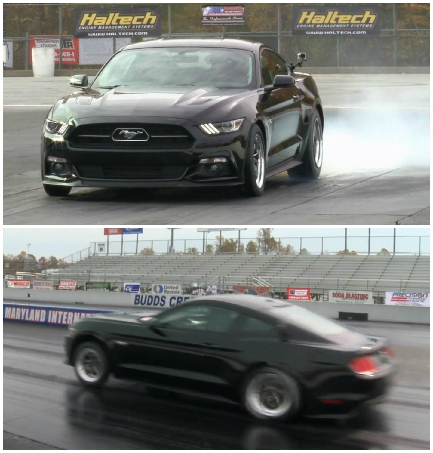World Fastest Mustang 2015