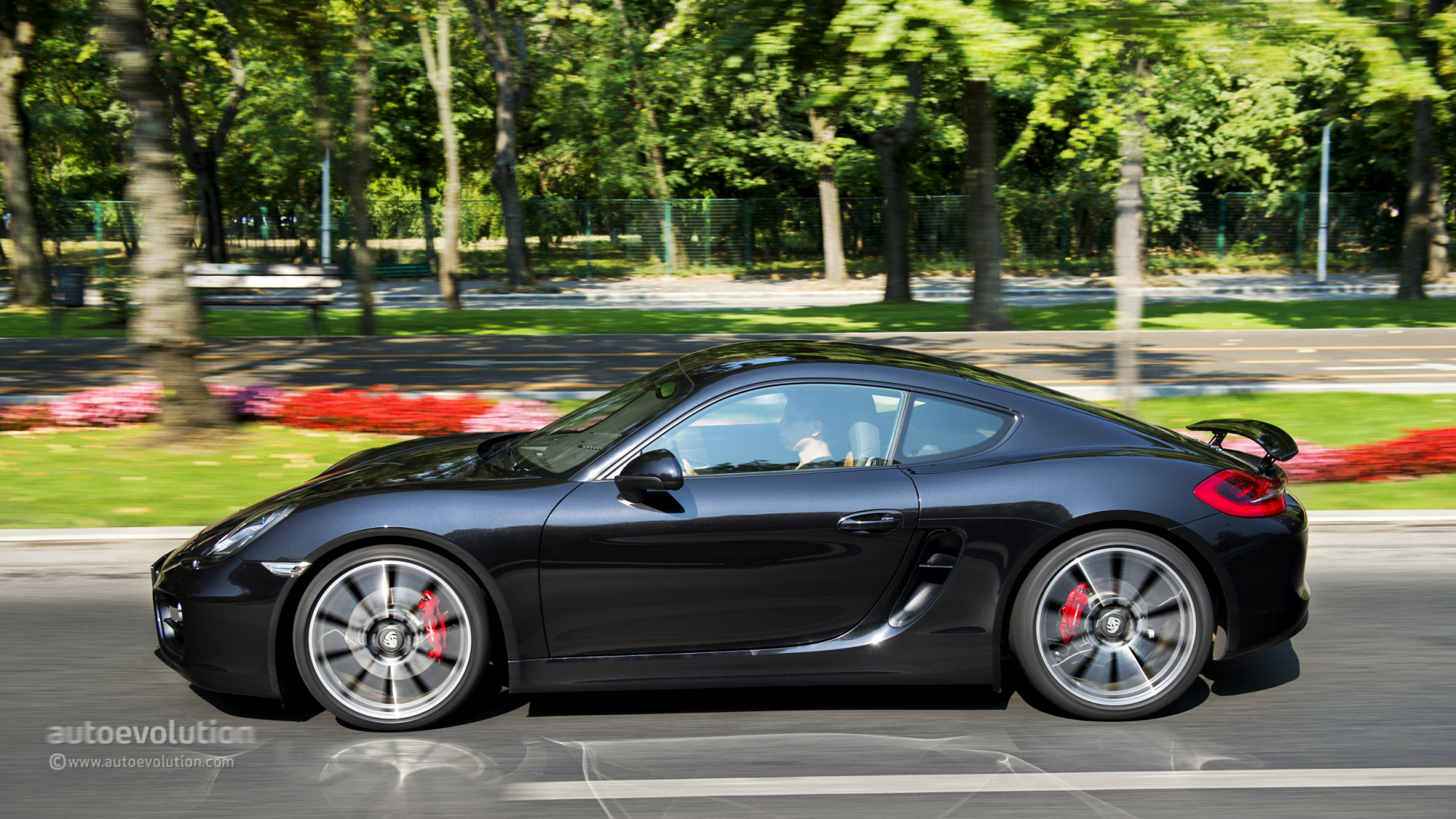 2014 porsche cayman s review page 4 autoevolution. Black Bedroom Furniture Sets. Home Design Ideas