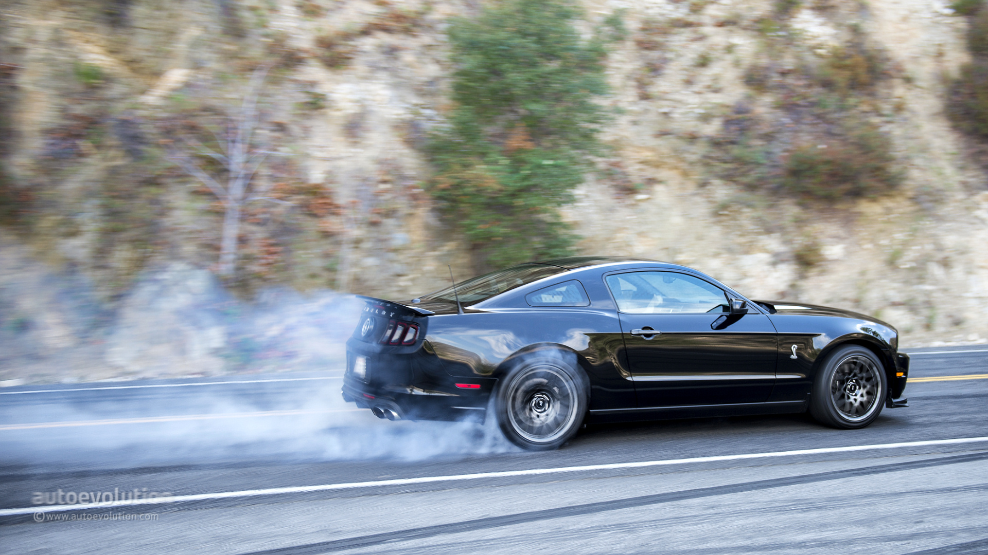 2014 ford shelby gt500 - Photo Gallery 56