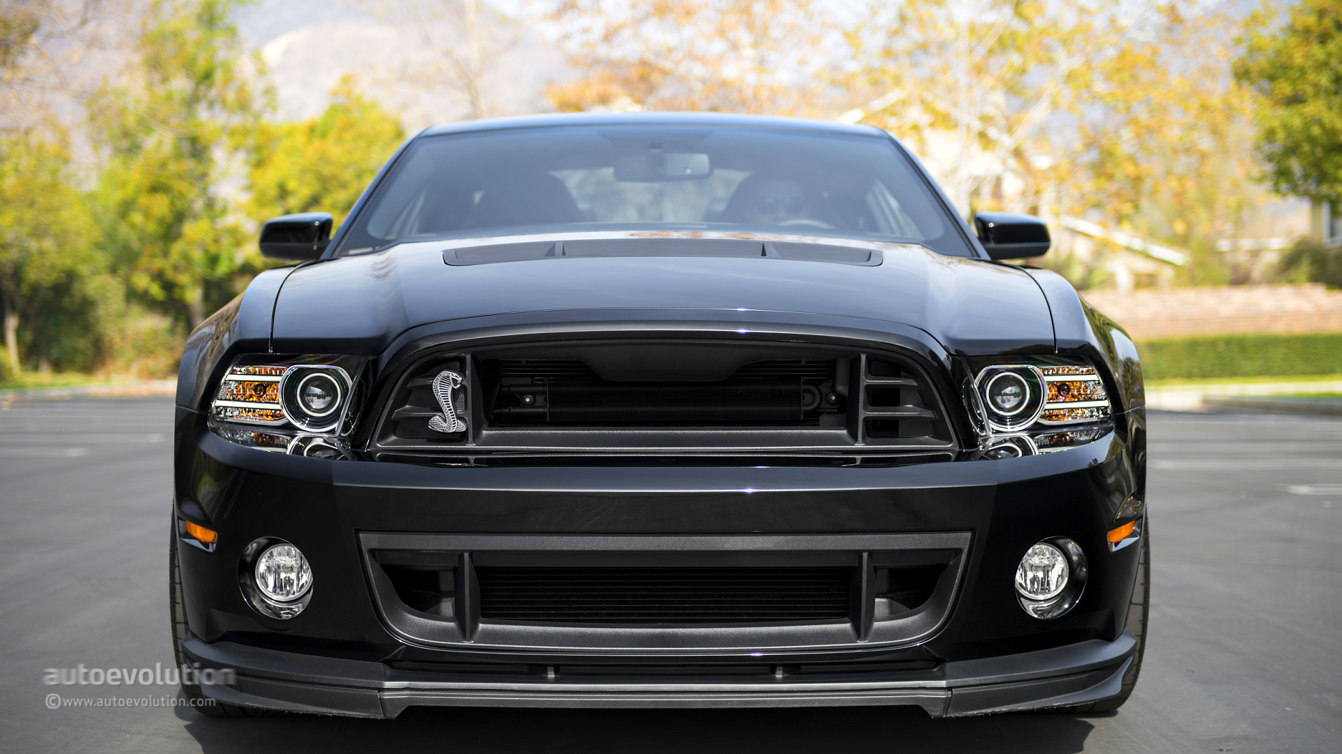 2014 ford mustang shelby gt500 review autoevolution. Black Bedroom Furniture Sets. Home Design Ideas