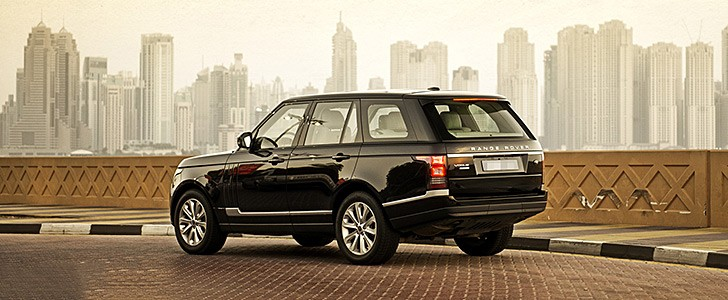 What Breed Of Dog Is On Range Rover Commercial | Dog Breeds Picture